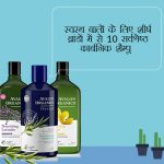 Best Organic Shampoo from Top Brands For Healthy Hair in Hindi