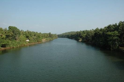 Kuttiadi River