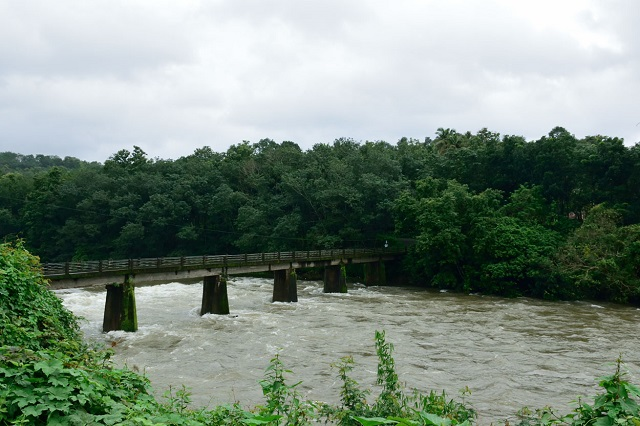 Manimala River