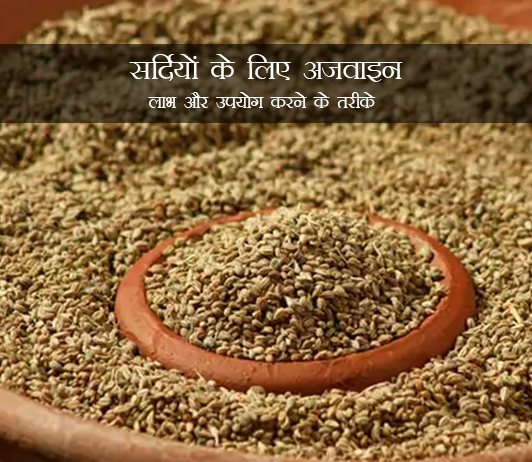 Ajwain for Cold in Hindi सर्दियों के लिए अजवाइन: लाभ और उपयोग करने के तरीके