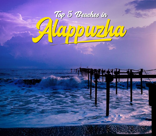 Beaches in Alappuzha: List of Top 5 Beaches in Alappuzha You Need To Visit