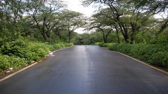 Delhi Ridge Area