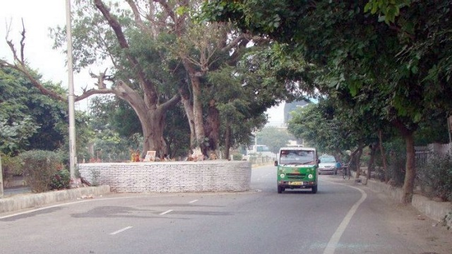 Dwarka Haunted Tree (Dwarka Sector 9 Metro Station)