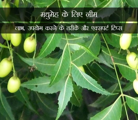 Neem for Diabetes in Hindi मधुमेह के लिए नीम: लाभ, उपयोग करने के तरीके और एक्सपर्ट टिप्स
