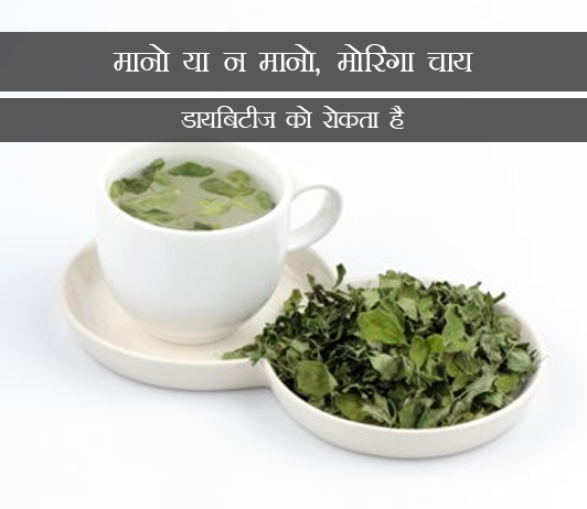 Moringa Tea Prevents Diabetes in Hindi मानो या न मानो, मोरिंगा चाय डायबिटीज को रोकता है