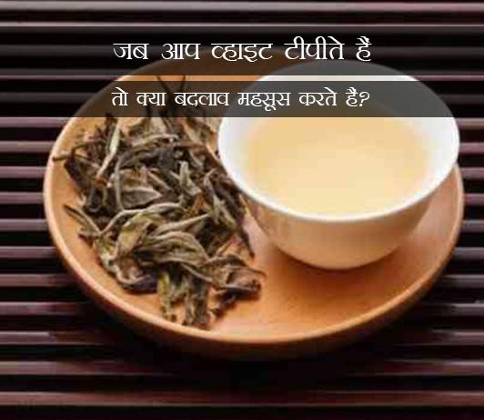 What Happens To Your Body When You Drink White Tea in Hindi जब आप व्हाइट टीपीते हैं तो क्या बदलाव महसूस करते हैं?