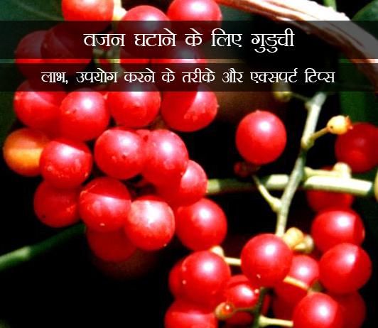 Guduchi for Weight Loss in Hindi वजन घटाने के लिए गुडुची: लाभ, उपयोग करने के तरीके और एक्सपर्ट टिप्स
