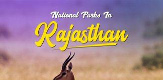 National Parks In Rajasthan: Top 16 National Parks & Wildlife Sanctuaries In Rajasthan