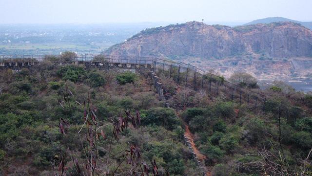 Vandalur-Reserve-Forest