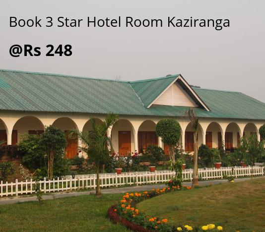 3 Star Hotel Room Kaziranga