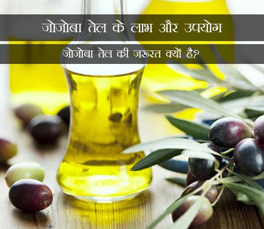 Benefits of Jojoba Oil in Hindi जोजोबा तेल के लाभ और उपयोग: जोजोबा तेल की जरूरत क्यों है?