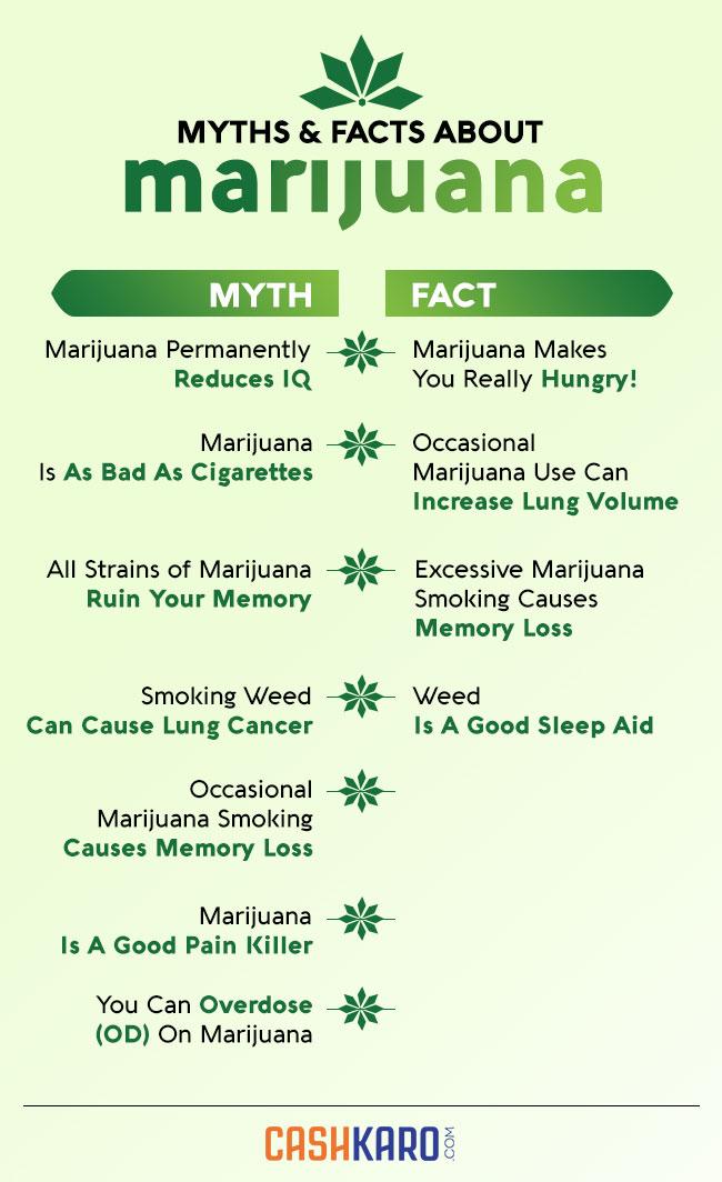 Popular Myths About Marijuana