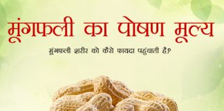 Peanuts Nutrition Value in Hindi मूंगफली का पोषण मूल्य: मूंगफली शरीर को कैसे फायदा पहुंचाती है?