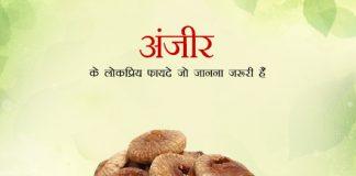 Popular Benefits Of Figs in Hindi अंजीर के लोकप्रिय फायदे जो जानना जरूरी हैं