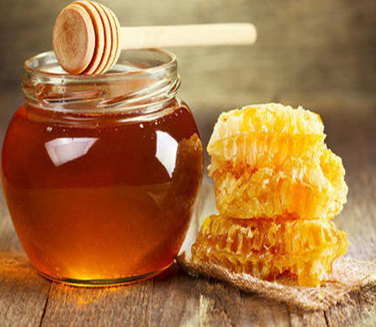 buy organic oil & honey on bigbasket