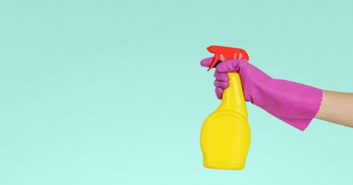 Best carpet and upholstery cleaners in India