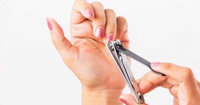 Best Nail Cutters