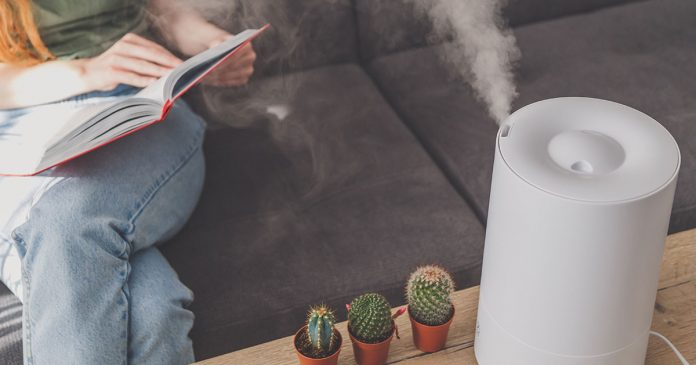 Maintain Your Room Moisture Level with the Best Humidifier