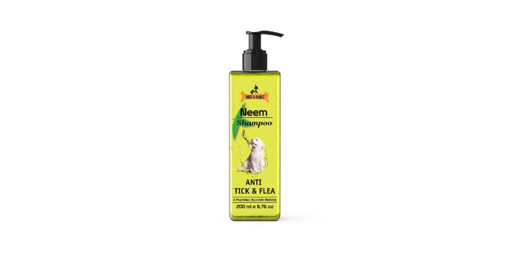 best antidandruff shampoo