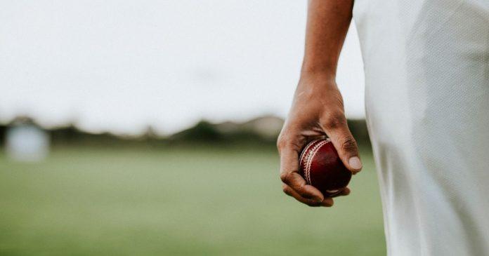 Best Cricket Ball Brands