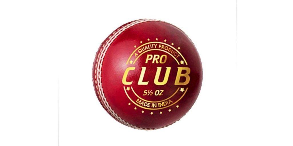 DSC Cricket Ball