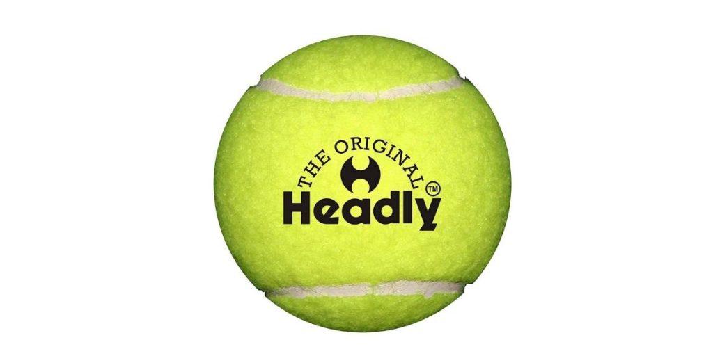 Silver's Headley Cricket Ball