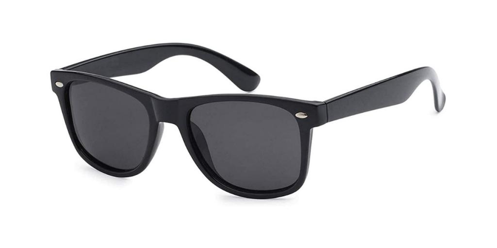 Heron Wills Wayfarer Sunglasses