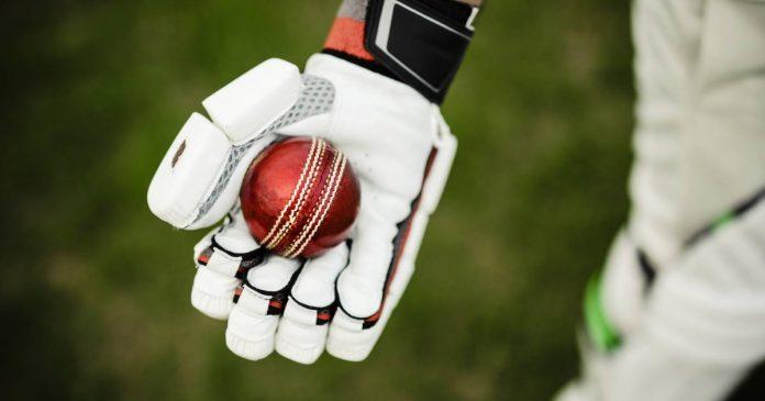 Best Cricket Gloves Brands