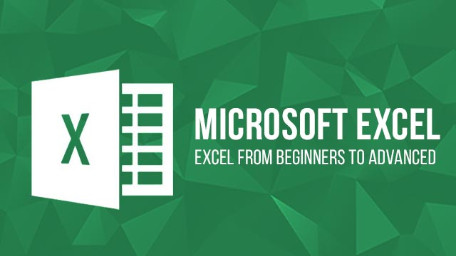 Microsoft Excel Beginners to Advance Course