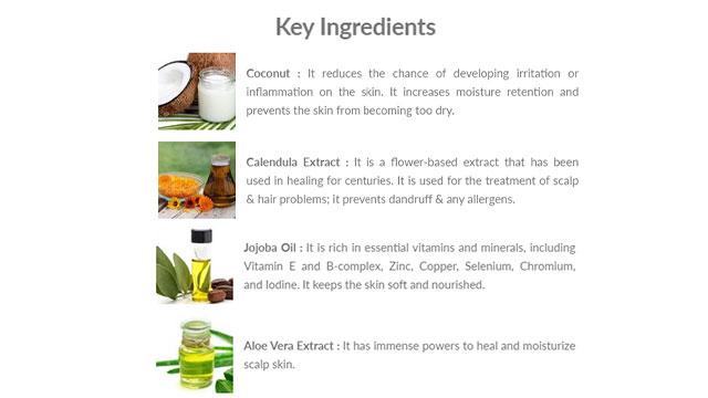 Gentle Cleansing Shampoo Key Ingredients