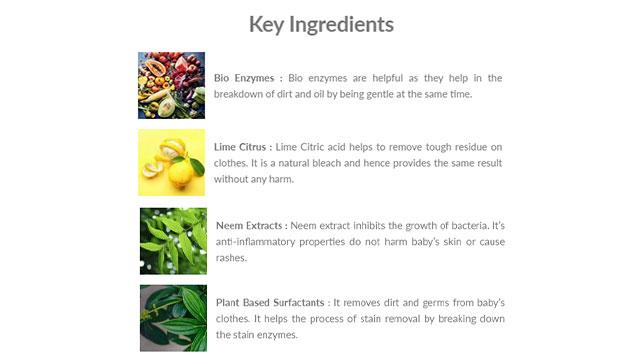 Plant-Based Laundry Detergent Key Ingredients