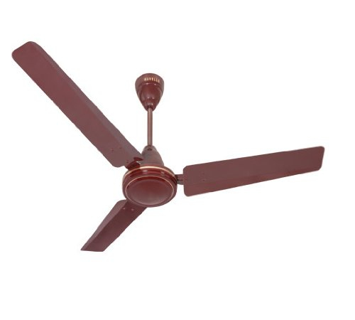 Havells Pacer 900 mm Ceiling Fan (Brown)