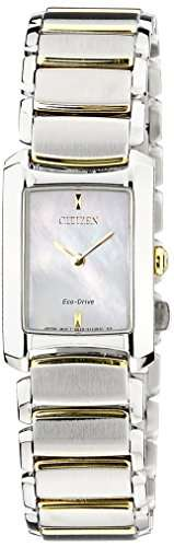 Citizen Eco-Drive EG2975-50D Analog Watch (EG2975-50D)
