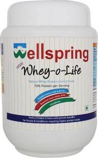 Wellspring Whey-O-Life Whey Protein (500gm)