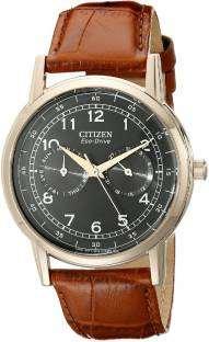 Citizen Eco-Drive AO9003-08E Stainless Steel Men's Watch (AO9003-08E)
