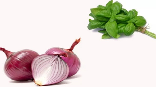Onion & Basil