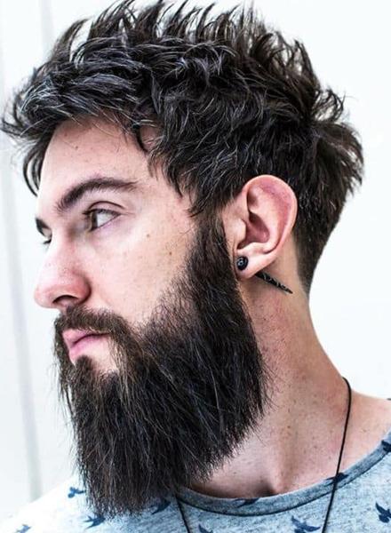 Garibaldi Beard
