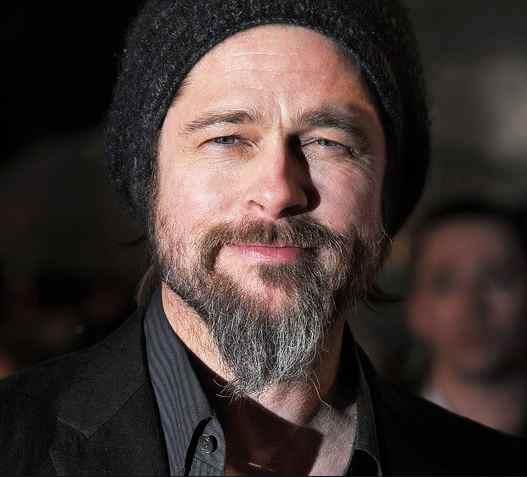 Beard Like Brad Pitt